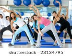 group of gym people in an... | Shutterstock . vector #23134795