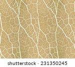 Seamless Pattern. Nature Theme.