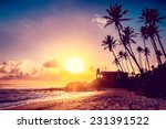 extremely beautiful  sunset... | Shutterstock . vector #231391522