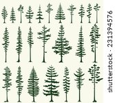 Set Of Stylized Pine...