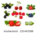 big group of fresh berries and... | Shutterstock . vector #231442588