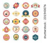 pet badge flat banner design... | Shutterstock .eps vector #231543076