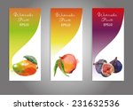 vector banner set of watercolor ... | Shutterstock .eps vector #231632536