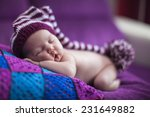newborn baby girl in a knitted... | Shutterstock . vector #231649882