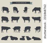 Cows Vector Set