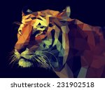 Stock vector low poly design tiger illustration 231902518