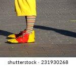 The Clown Shoes