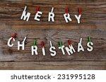 merry christmas greeting... | Shutterstock . vector #231995128