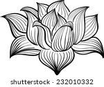 vector black and white lotus...