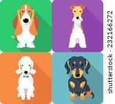 Stock vector vector set dogs sitting icon flat design fox terrier bedlington terrier basset hound dachshund 232166272