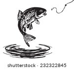Fish Jumping Out Of The Water....