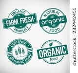 grunge organic food vector... | Shutterstock .eps vector #232442455