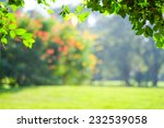 blur green leaves with bokeh ... | Shutterstock . vector #232539058