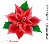red poinsettia. vector  eps 10. | Shutterstock .eps vector #232576618