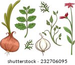 illustration featuring... | Shutterstock .eps vector #232706095