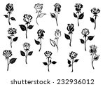 Stock vector black and white elegance roses flowers set for any floral design or love concept 232936012