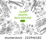 hand drawing vector background... | Shutterstock .eps vector #232946182