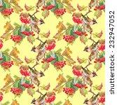 birds on viburnum branch... | Shutterstock . vector #232947052