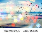 birds flying and abstract sky ... | Shutterstock . vector #233015185