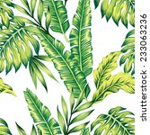fashion painting jungle...   Shutterstock .eps vector #233063236