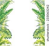 tropical plants mirror... | Shutterstock .eps vector #233063242