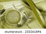 digital illustration of  sperm  ... | Shutterstock . vector #233261896