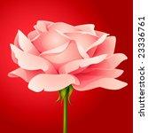 vector pink rose   Shutterstock .eps vector #23336761