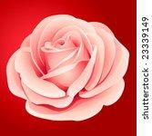 vector pink rose | Shutterstock .eps vector #23339149