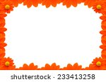 the orange flower border  on... | Shutterstock . vector #233413258