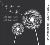 Vector Dandelion Black White...