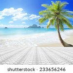 summer holiday concept  stone... | Shutterstock . vector #233656246