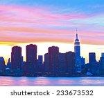 new york city  usa. downtown... | Shutterstock . vector #233673532
