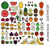 big fruit collection  free hand ... | Shutterstock .eps vector #233769235