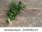 myrtle on wood | Shutterstock . vector #233958115