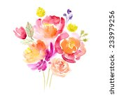watercolor floral bouquet | Shutterstock . vector #233979256