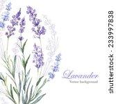 watercolor vector lavender...   Shutterstock .eps vector #233997838
