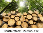 wooden logs with forest on... | Shutterstock . vector #234023542