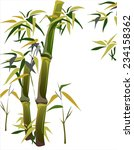 thickets of bamboo  vector... | Shutterstock .eps vector #234158362