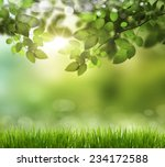 eco nature   green and blue... | Shutterstock . vector #234172588