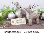 english christmas card with two ... | Shutterstock . vector #234255232