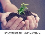 hand and plant  | Shutterstock . vector #234269872