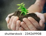 hand and plant  | Shutterstock . vector #234269908