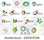 abstract company logo vector... | Shutterstock .eps vector #234319246