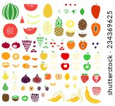 fruit collection | Shutterstock .eps vector #234369625
