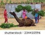 pushkar india   october 31 2014 ... | Shutterstock . vector #234410596