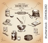 vector hand drawn set. vintage... | Shutterstock .eps vector #234436282