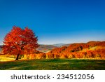 Colorful Autumn Landscape....