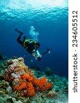 diver swimming in banda ... | Shutterstock . vector #234605512