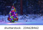Christmas Tree In The Woods At...