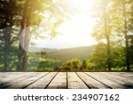 mountains landscape with... | Shutterstock . vector #234907162